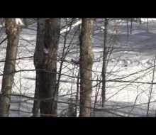 Winter in the Western Upper Peninsula of Michigan